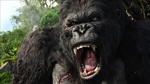 King Kong - zjizvený bojovník