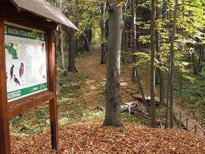 01 Naučná stezka Frýdecký les