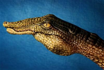 Kliknutím zobrazíte větší formát - handpainting - krokodýl