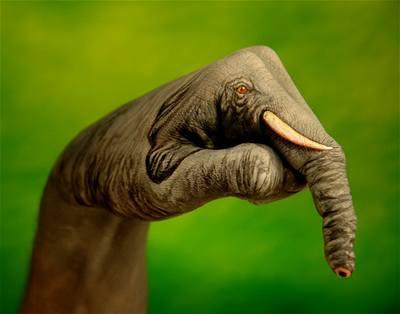 Kliknutím zobrazíte větší formát - handpainting - slon 2
