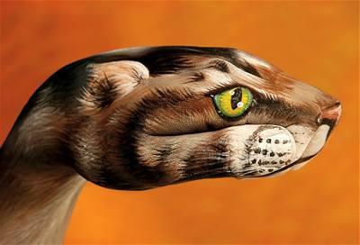 Kliknutím zobrazíte větší formát - handpainting - kočka 2