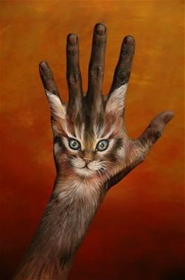 Kliknutím zobrazíte větší formát - handpainting - kočka 3