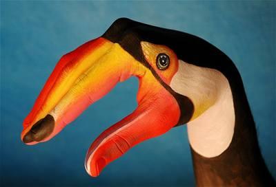 Kliknutím zobrazíte větší formát - handpainting - tukan