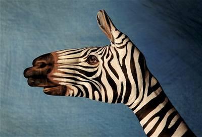 Kliknutím zobrazíte větší formát - handpainting - zebra