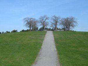 Asplundův lesní hřbitov 1